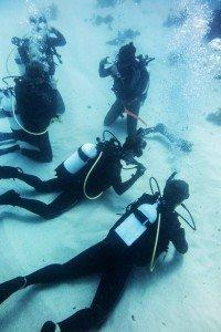 PADI Open Water Diver Skills - Perth Ocean